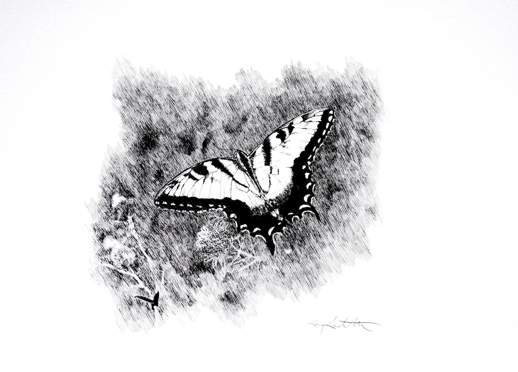 Evan's Butterfly